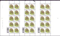 "Belgium - uncut sheet of 30 stamps ""Collared dove"" with plate numbers 4-5-6 - OBP 3135."