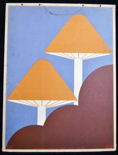 School poster illustration example from 1929 in Art Deco style - Mushrooms