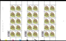 "Belgium - uncut sheet of 30 stamps ""Collared dove"" with plate numbers 1-2-3 - OBP 3135."
