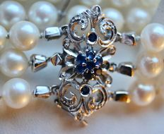 Antique pearl bracelet with 3 strands of genuine sea/salt water lustrous round Japanese Akoya pearls and an 18 kt White gold handmade clasp with sapphires.
