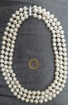 Three-strand necklace made of large round fresh water cultured pearls, with silver - No reserve price.