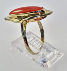 Gold ring with oval red coral