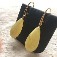 Pendant drop shaped earrings made of egg yolk Baltic amber, 100% natural: not pressed, nor modified
