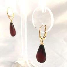 Drop pendant earrings made of  100% natural cherry Baltic amber: not pressed, not modified