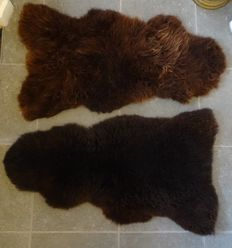 Two large very thick brown sheepskins - new