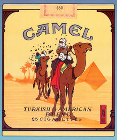 Joost Veerkamp - Camel, after Hergé / TinTin