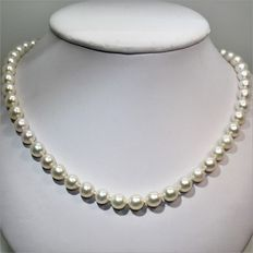 Akoya necklace of Japanese cultured pearls Ø 7.5 x 8 mm.