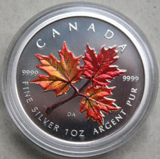 Canada - 5 dollars 2001, fine silver coin with colour application 'Maple leaf, autumn'
