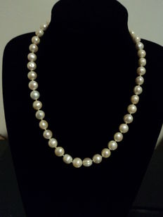 Choker necklace in white pearls with 18 kt gold clasp
