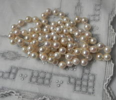 Pearl necklace salt water Akoya pearls, 7.5 mm in diameter, from the Japanese sea