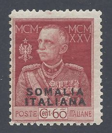 Somalia 1925   - Giubileo 60c Carminio perforated 11 - Sassone 67