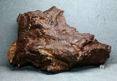 Gebel Kamil - Iron Meteorite from Egyptn - Best excellent Ataxite - Largest on the Market for sale - TOP - Best Museum Grade - 27.00 x 18.00 cm 6.580 g