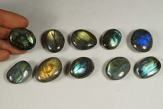 Lot of natural polished Labradorite - 145gm (10)