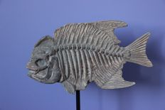 Replica Fossil Fish on metal stand - 31 x 26cm