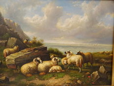 K. Forster - sheep on the coast