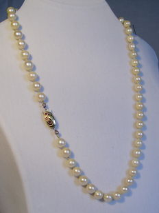Genuine Japanese salt water pearl necklace, Akoya pearl-necklace