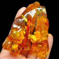 Sun spangles in Baltic Amber - 71 x 58 x 20 mm - 44.13 g