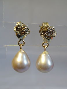Gold ear studs with grey cultured pearls