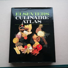 """Lot with three interesting cookbooks, including the famous """"Cooking con Amore"""" by Sofia Loren."""