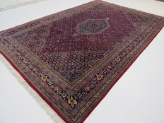 Wonderfully beautiful Persian carpet Indo/Bidjar 300 x 200cm, top quality, end of the 20th century. Excellent condition