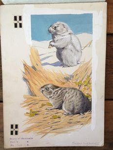 "Neave Parker (1910-1961) - Original illustration ""Snow lemming"" - early 1950s"