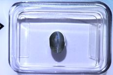 Sillimanite cat's eye – 1.15 ct – No reserve price