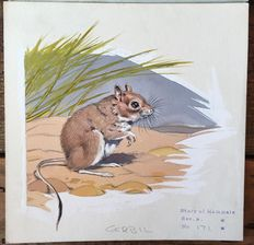 "Neave Parker (1910-1961) - Original illustration ""Gerbil"" - early 1950s"