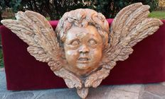 Large-sized head of a winged Putto in coral red Verona marble - Italy - 19th century