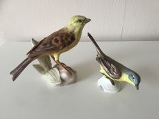 Goebel - porcelain birds yellowhammer and wagtail Germany - 1973