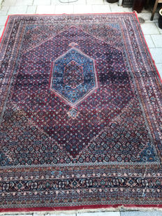 Beautiful large Oriental Bidjar carpet, 264x360