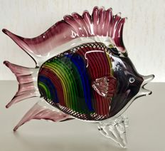 Marco Polo - Multicoloured Fish.