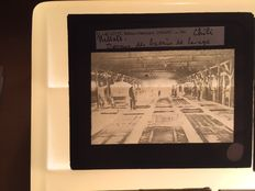 World - Glass slides 12 x 1915 +/-