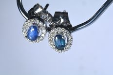 18 kt white gold earrings with 32 diamonds H-SI and natural blue sapphires. ***No reserve price***