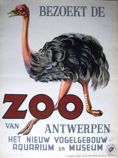 René Van Poppel - visit the Zoo, the new bird building... - 1950