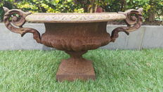 Chic cast iron jardinière with ornate ears