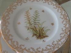 Service dishes in porcelain from Limoges 110 pieces