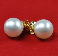 Pair of Gold earrings with 9 mm natural cultured Akoya pearls.