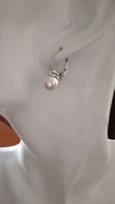 Earrings in 925 silver with genuine freshwater pearls – No reserve