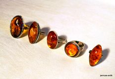 5 beautiful amber rings silver Fischland amber