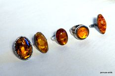 5 beautiful amber rings, silver, Fischland amber, around 1950