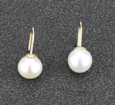 Pair of 18 kt yellow gold earrings with freshwater cultured round pearls measuring 8.10 mm (approx.) 'NO RESERVE PRICE'