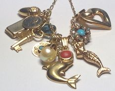 Chain with 13 gold charms