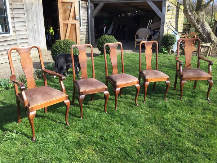 Awesome 5 Solid Oak Dining Chairs In Queen Anne Style Of Which 2 Have Dailytribune Chair Design For Home Dailytribuneorg