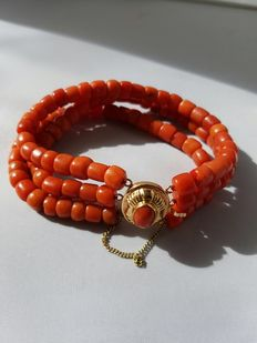 Natural precious coral bracelet with 3 strands with 14 karat gold filigree clasp with extra safety chain - circa 1890