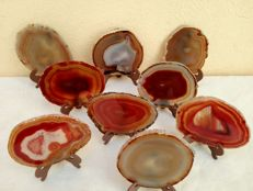 Fine collection of natural Agate slices, with stands - 11 and 12cm - 1025 gm  (9)