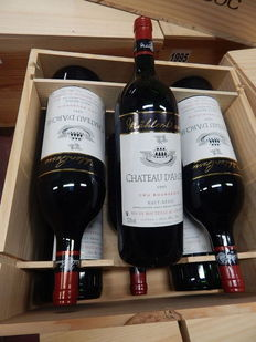 1995 Château d'Arche, Haut-Médoc Cru Bourgeois – 6 magnums of 1.5 L in wooden case.
