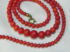 Gold-plated clasp coral necklace with a wonderful red colour tone.