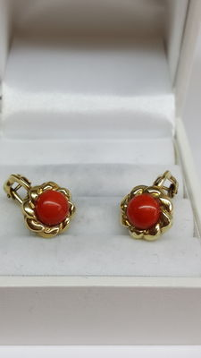 Gold clip-on earrings 14 kt yellow gold set with precious coral