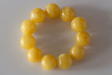 Baltic Amber bracelet in egg yolk/ butter colour, 48.53 gr