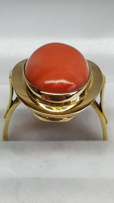 Yellow gold women's ring of 14 kt set with red coral